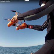 Drohne für die Probenentnahme bei Buckelwalen